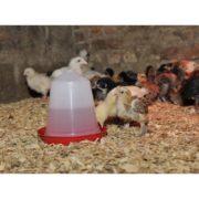 vandautomat-til-smaa-kyllinger
