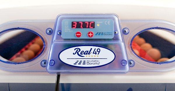 real-48-2