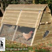 chicken-ark